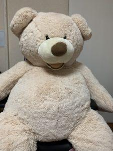 コストコのクマのぬいぐるみMサイズ
