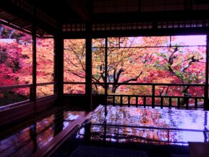 京都・瑠璃光院の紅葉